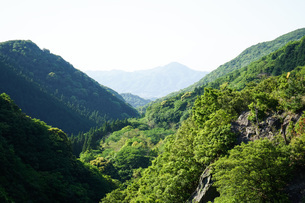 ダム・水源イメージの写真素材 [FYI04724636]