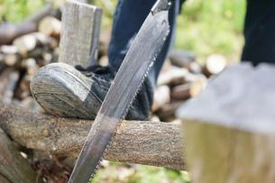 薪割りをするシニアの写真素材 [FYI04724679]