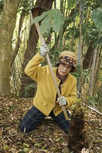 タケノコ刈りをする高齢の女性の写真素材 [FYI04724714]