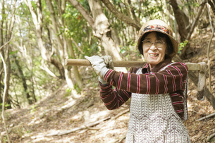 タケノコ刈りをする高齢の女性の写真素材 [FYI04724725]
