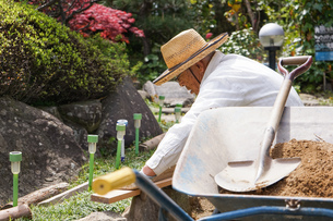 土木工事をする高齢の男性の写真素材 [FYI04724848]