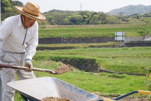 土木工事をする高齢の男性の写真素材 [FYI04724851]