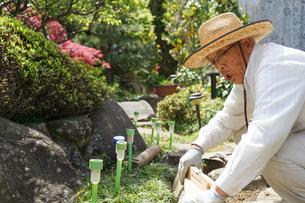 土木工事をする高齢の男性の写真素材 [FYI04724870]