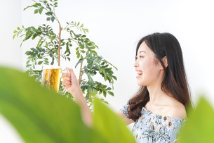 ビアガーデンでビールを飲む女性の写真素材 [FYI04725040]