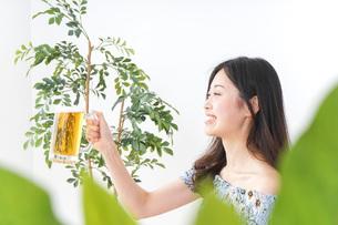 ビアガーデンでビールを飲む女性の写真素材 [FYI04725050]