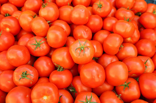 市場に並ぶ新鮮なフルーツの写真素材 [FYI04725096]