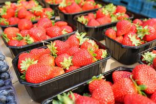 市場に並ぶ新鮮なフルーツの写真素材 [FYI04725097]