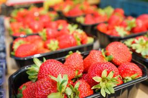 市場に並ぶ新鮮なフルーツの写真素材 [FYI04725099]