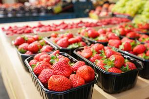 市場に並ぶ新鮮なフルーツの写真素材 [FYI04725105]
