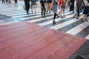 横断歩道の写真素材 [FYI04725261]