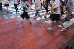 横断歩道の写真素材 [FYI04725263]