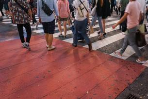 横断歩道の写真素材 [FYI04725267]