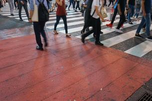 横断歩道の写真素材 [FYI04725271]