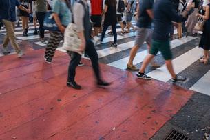 横断歩道の写真素材 [FYI04725275]