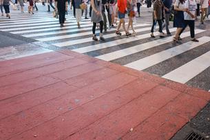横断歩道の写真素材 [FYI04725279]