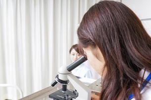 顕微鏡を見る医師と看護師の写真素材 [FYI04727294]