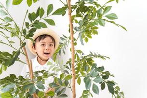 やんちゃな幼稚園児の写真素材 [FYI04727627]