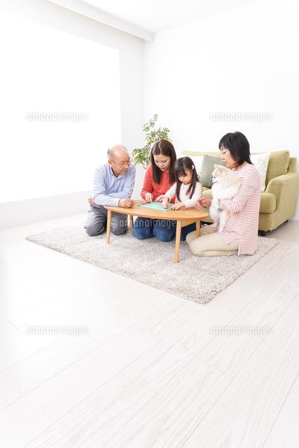 幸せな家族の集合写真の写真素材 [FYI04727723]