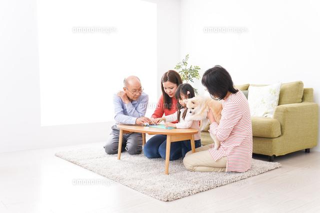 幸せな家族の集合写真の写真素材 [FYI04727725]