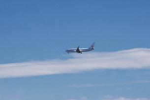 飛行機 JALの写真素材 [FYI04728305]