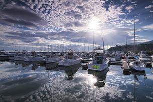 小樽港マリーナの朝の写真素材 [FYI04728325]