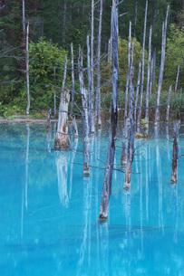 青い池の写真素材 [FYI04728359]