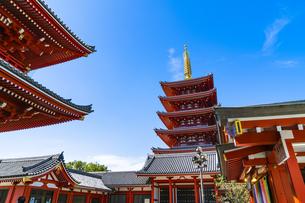 浅草 浅草寺 お寺の風景の写真素材 [FYI04728557]