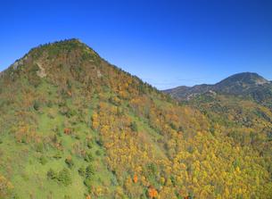 笠岳南西側から望む紅葉の樹林と笠岳と横手山の写真素材 [FYI04728569]