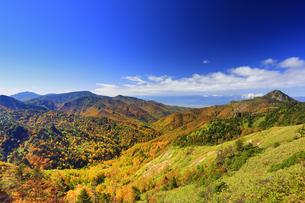 横手山のぞき付近から望む紅葉の樹林と笠岳と御飯岳と四阿山の写真素材 [FYI04728571]