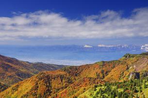 横手山のぞき付近から望む紅葉の樹林と長野市と北アルプス遠望の写真素材 [FYI04728573]