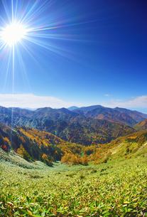 横手山のぞき付近から望む紅葉の樹林と四阿山遠望の写真素材 [FYI04728574]