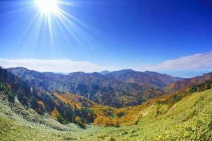 横手山のぞき付近から望む紅葉の樹林と四阿山と北アルプス遠望の写真素材 [FYI04728575]