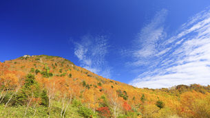 笠岳避難小屋から望む紅葉の笠岳とすじ雲の写真素材 [FYI04728595]