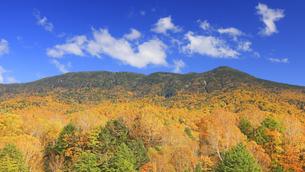 志賀高原プリンスホテル東館付近から望む紅葉の岩菅山と雲の写真素材 [FYI04728602]
