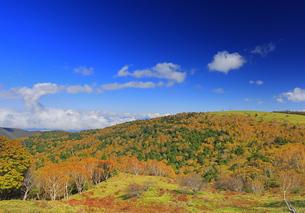 武石峰南東斜面からから望む紅葉の焼山とハート型の雲の写真素材 [FYI04728643]