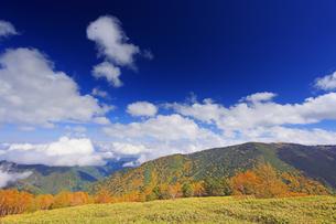 美ケ原自然保護センター付近から望む上田方向の紅葉の樹林と雲の写真素材 [FYI04728646]