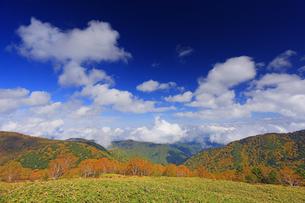 美ケ原自然保護センター付近から望む上田方向の紅葉の樹林と雲の写真素材 [FYI04728647]