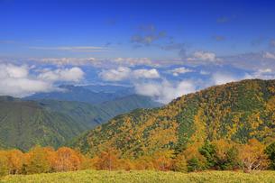 美ケ原自然保護センター付近から望む上田方向の紅葉の樹林と雲の写真素材 [FYI04728649]
