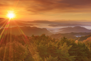 鷹狩山から望む蓼科山などの山並みと雲海と紅葉の樹林と朝日の写真素材 [FYI04728683]