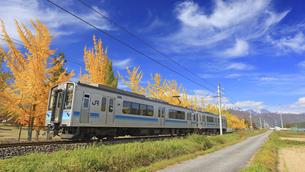 大町文化公園のイチョウ並木と大糸線の電車と鹿島槍ヶ岳遠望の写真素材 [FYI04728706]
