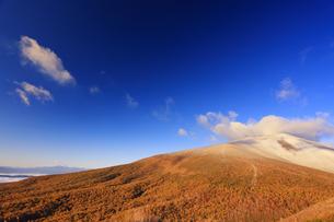 小浅間山から望む朝日に染まる新雪の浅間山と噴煙と雲の写真素材 [FYI04728732]