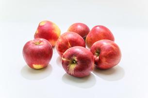 白バックの紅玉りんごの写真素材 [FYI04728764]