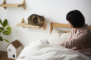 ねこステップに座る猫と女性の写真素材 [FYI04728867]