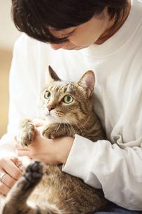 人に抱きかかえられている猫の写真素材 [FYI04728898]