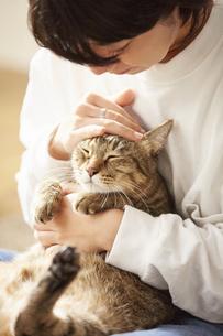 人に抱きかかえられている猫の写真素材 [FYI04728899]