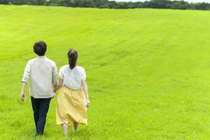 手をつないで草原を歩くカップルの後ろ姿の写真素材 [FYI04728973]