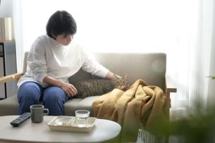 ソファの上に座る女性と猫の写真素材 [FYI04729000]