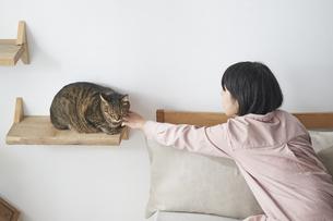ねこすてっぷに座る猫と女性の写真素材 [FYI04729020]