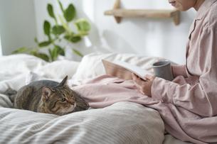 ベッドの上で本を読む女性と猫の写真素材 [FYI04729025]