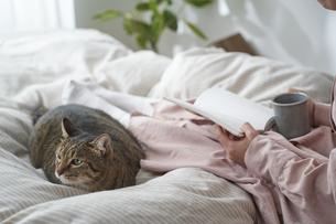 ベッドの上で本を読む女性と猫の写真素材 [FYI04729026]